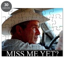 MISS-ME-YET-2 Puzzle