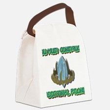 ADDITIONAL PYLONS Canvas Lunch Bag