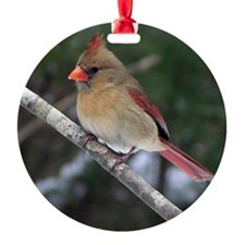 Female Cardinal Ornament