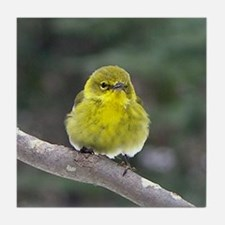 Fat Yellow Finch Tile Coaster