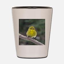 Fat Yellow Finch Shot Glass