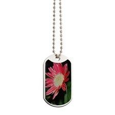 barnredflower Dog Tags