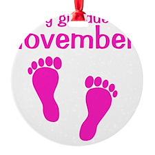 pinkfeet_babygirlduein_november Ornament