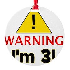 warningim3 Ornament