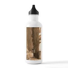 SAP BUCKETSj Water Bottle