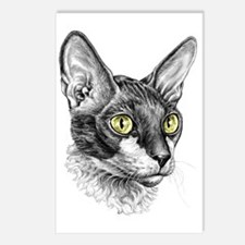 Cornish Rex Sketch Postcards (Package of 8)