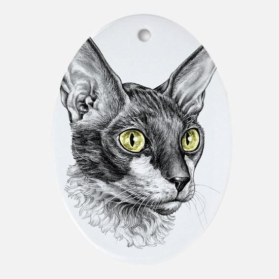 Cornish Rex Sketch Oval Ornament