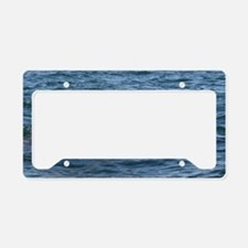 baby whale License Plate Holder