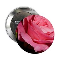 "Pink Rose 2.25"" Button"