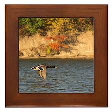 Odd Duck Framed Tile