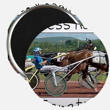 Harness Racing Fanatic Magnet