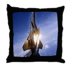AA28 CP-SMpst Throw Pillow