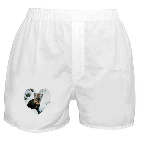 Little Fox Boxer Shorts