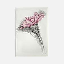 gerbera with pink Rectangle Magnet