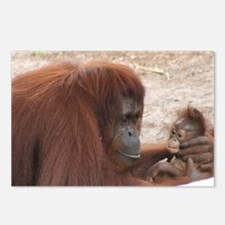Orangs Postcards (Package of 8)
