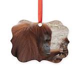Gorilla Picture Frame Ornaments
