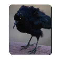 Crow Mousepad