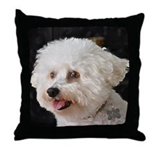 MARCO PAINTING Throw Pillow