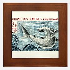 1965 Comoros Islands Hammerhead Shark Stamp Framed