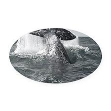 IMG_9023 - Copy Oval Car Magnet