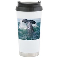 IMG_9023 Travel Mug