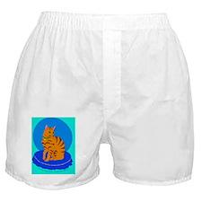 2-smallposter_pretty_kitty_cp_color Boxer Shorts