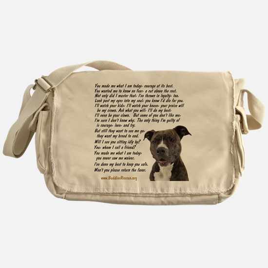 you_made_me_what_I_am_today_pit2 Messenger Bag