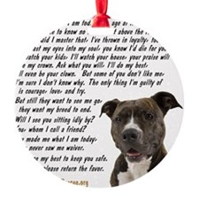 you_made_me_what_I_am_today_pit2 Ornament
