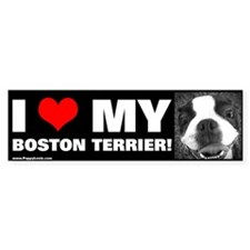 """I LOVE MY BOSTON TERRIER!"" Bumper Car Sticker"