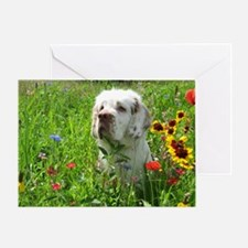 Tilly2 Greeting Card