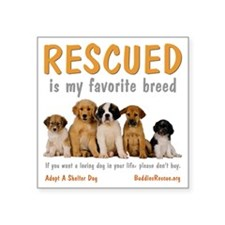 "rescued_is_my_favorite_bree Square Sticker 3"" x 3"""