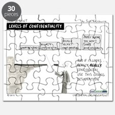 4/12/2010 - Levels of Confidentiality Puzzle