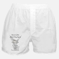7GiftsMagnet1a Boxer Shorts