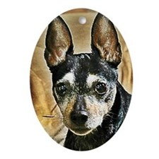 Senior Rat Terrier Oval Ornament