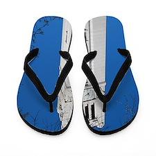 DSC_7014 Flip Flops