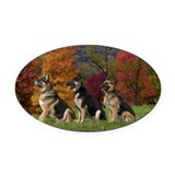 German shepherd Oval Car Magnets