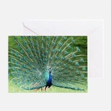IMG_7416 Greeting Card
