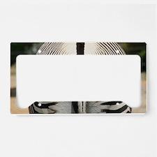 IMG_7894 License Plate Holder