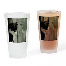pet-nc13 Drinking Glass