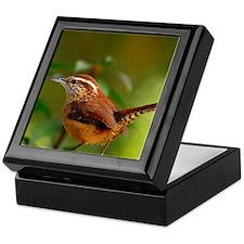 Carolina Wren DSC_0103 132 Keepsake Box