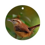 Carolina wren Round Ornaments