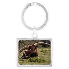 (3) Watusi Cow Landscape Keychain