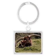 (6) Watusi Cow Landscape Keychain