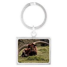 (10) Watusi Cow Landscape Keychain