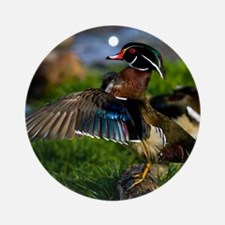(4) Wood Duck Wing Round Ornament
