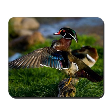 (4) Wood Duck Wing Mousepad