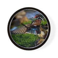 (15) Wood Duck Wing Wall Clock