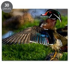 (15) Wood Duck Wing Puzzle