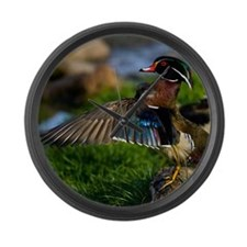 (15) Wood Duck Wing Large Wall Clock
