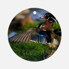 (15) Wood Duck Wing Round Ornament